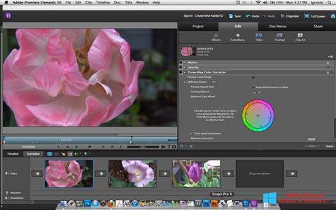 Petikan skrin Adobe Premiere Elements untuk Windows 8.1