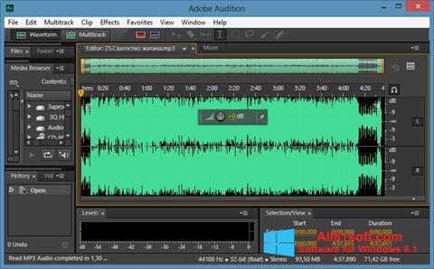 Petikan skrin Adobe Audition CC untuk Windows 8.1