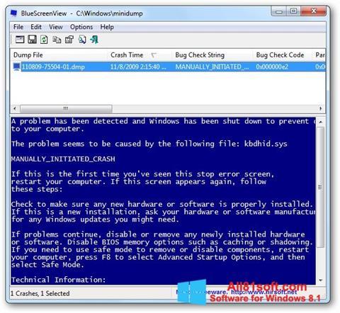 Petikan skrin BlueScreenView untuk Windows 8.1