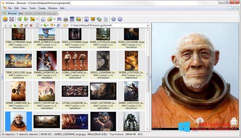 Petikan skrin XnView untuk Windows 8.1