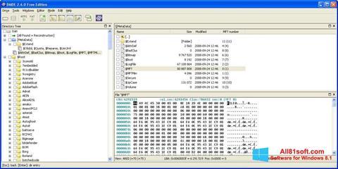 Petikan skrin DMDE untuk Windows 8.1