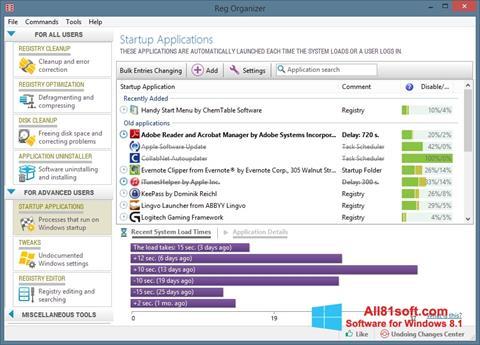 Petikan skrin Reg Organizer untuk Windows 8.1