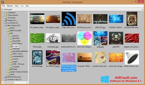 Petikan skrin IrfanView untuk Windows 8.1