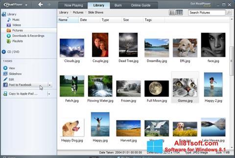 Petikan skrin RealPlayer untuk Windows 8.1